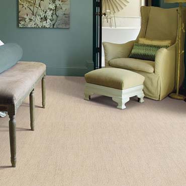Caress Carpet by Shaw | Holly, MI